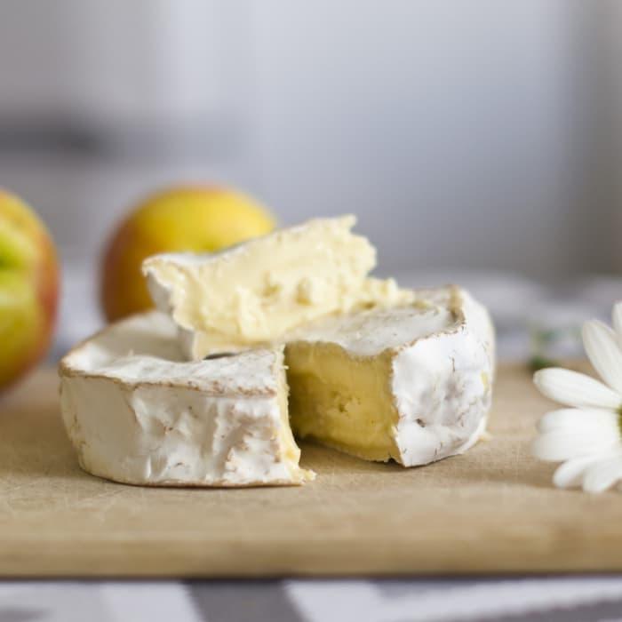 Ser Camembert - warsztaty serowarskie